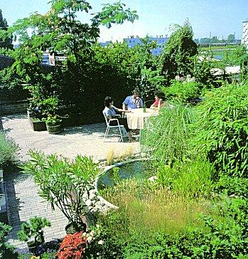 Zöldtető - az extenzív és intenzív zöldtetők